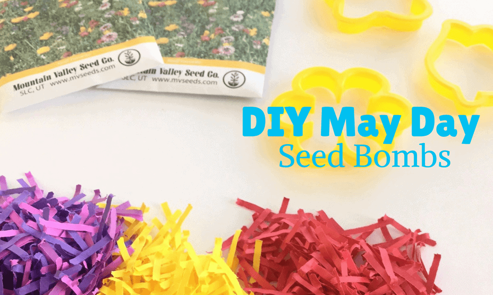 DIY May Day Gift seed bombs DIY Seed bombs
