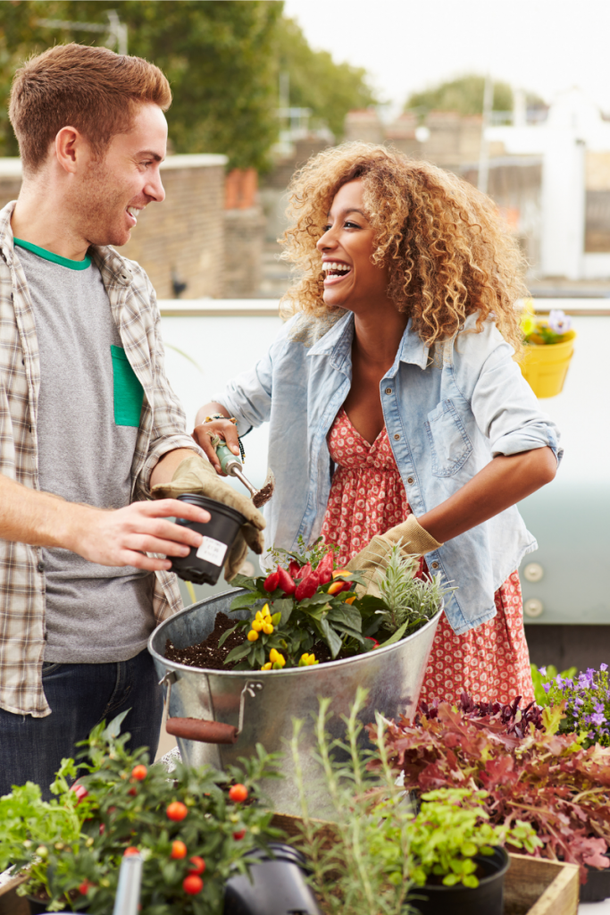 Photo of caucasian man and african-american woman gardening together and laughing. Garden tools and vegetables.