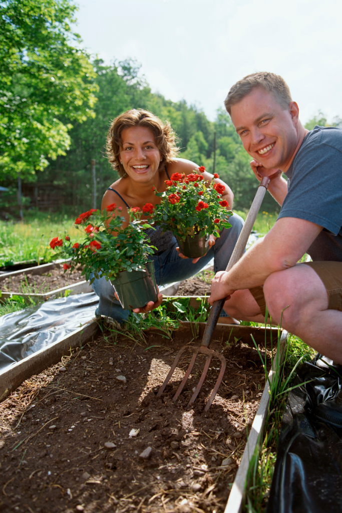 Photo of white woman and white man with a rake and planting red flowers in a garden box.