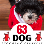 A photo of an adorable black dog with a white nose in a red Santa suit looking at the camera. Text overlay says 63 Dog Stocking Stuffers www The Gifty Girl dot com