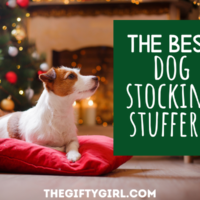An adorable dog sitting on a red pillow in front of a fireplace and Christmas Tree. Text Overlay says The Best Dog Stocking Stuffer www the gifty girl dot com
